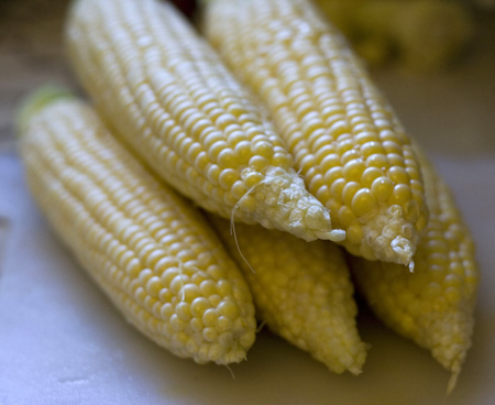 corn stack 2.jpg