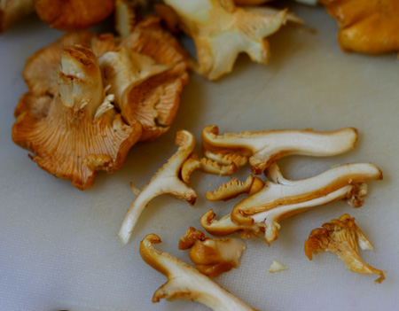 chanterelles sliced 2.jpg