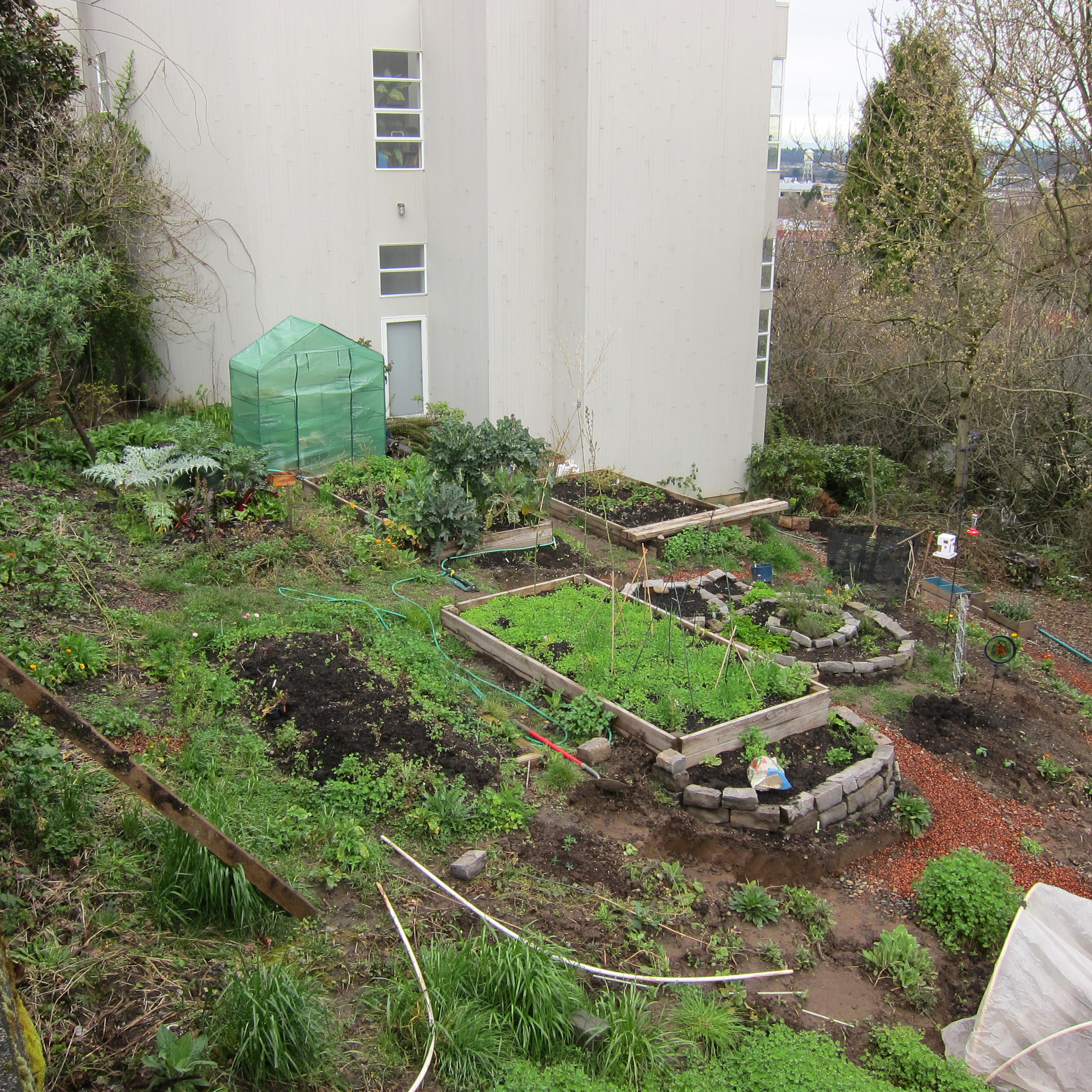 An Apartment Garden in Portland Stitch and Boots