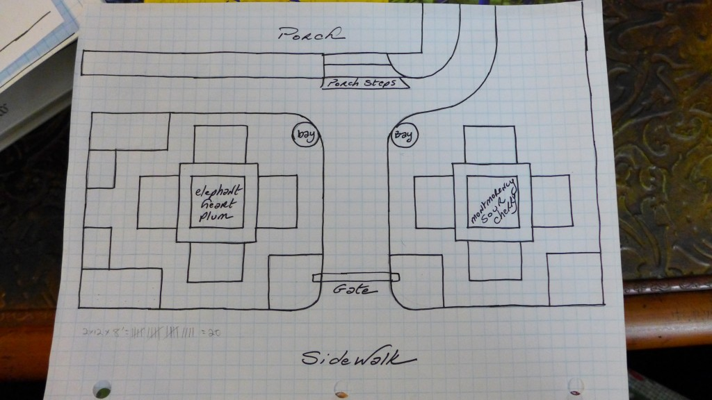 graphed plan